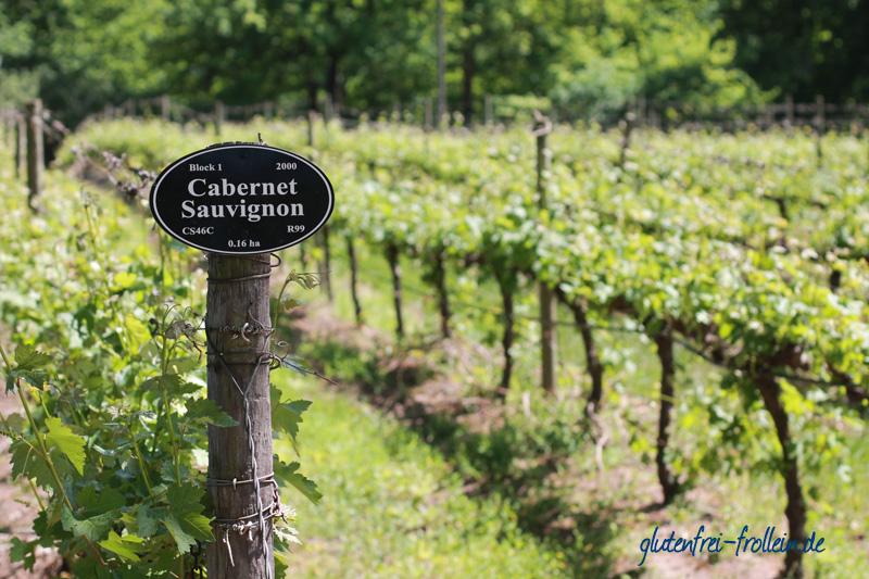 Stellenbosch Wein