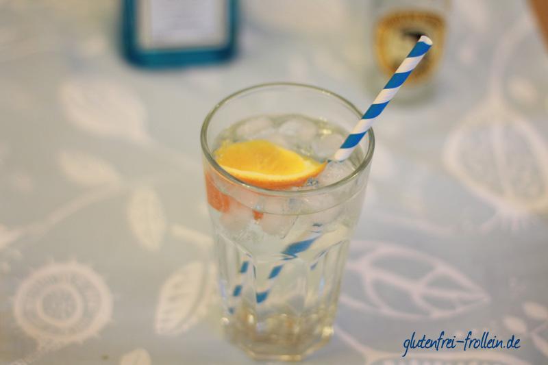 5 glutenfreie getraenke_gin tonic