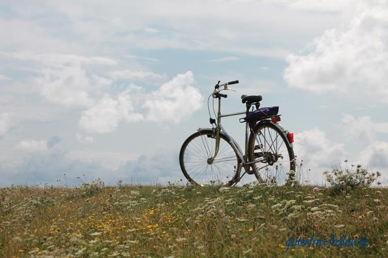 Fahrrad am Deich auf Amrum